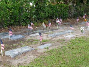Veterans Day - Bonita Springs Cemetery